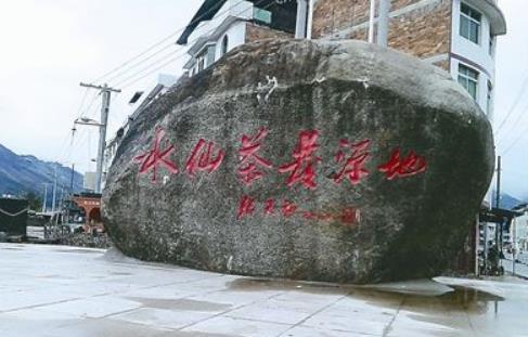 建阳小湖被称为水仙茶的发源地,有源远流长的茶历史